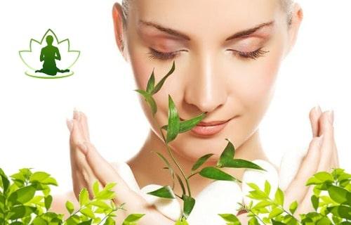 ayurvedic anti aging skin care
